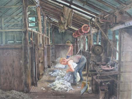 In the Shearing Shed, Innesvale