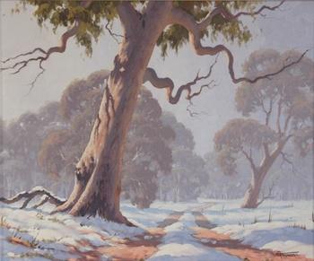 'Snow on Mount Canobolas'