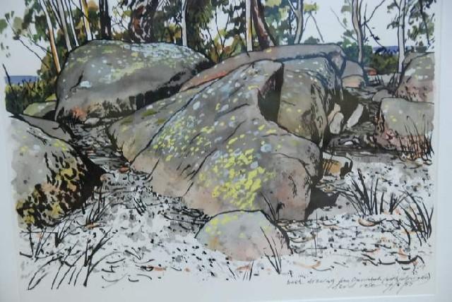 Australian Bushland Drawings Price Subscribe Bush Drawing